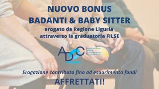 bonus badanti e baby sitter